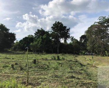 flat land for sale koh samui